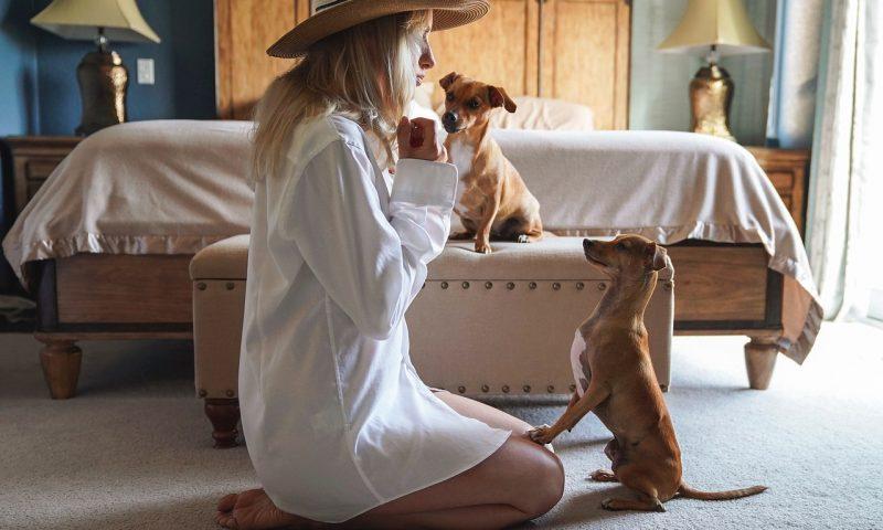 Prendre soin de son animal de compagnie