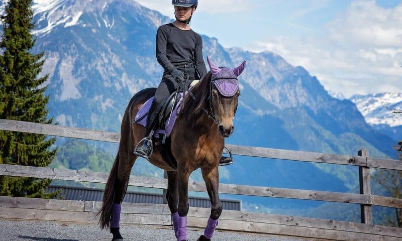 Faire du cheval en étant bien équipé c'est essentiel