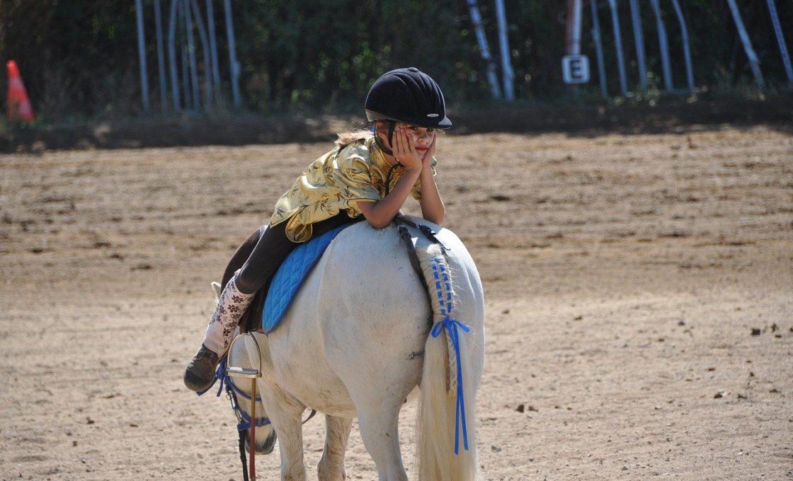Les accessoires indispensables pour débuter en équitation
